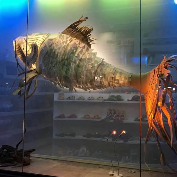 imagen noticia: ¡Este bonito pez luce ya en el escaparte del AQUARIUM!