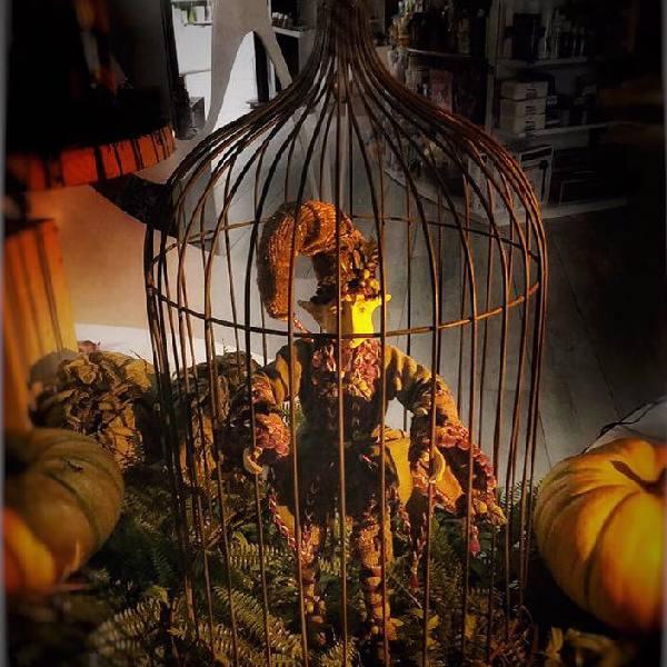 imagen noticia: El otoño llegó a BUSTO